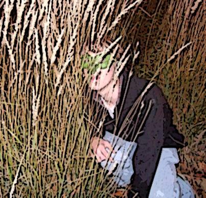 B grass
